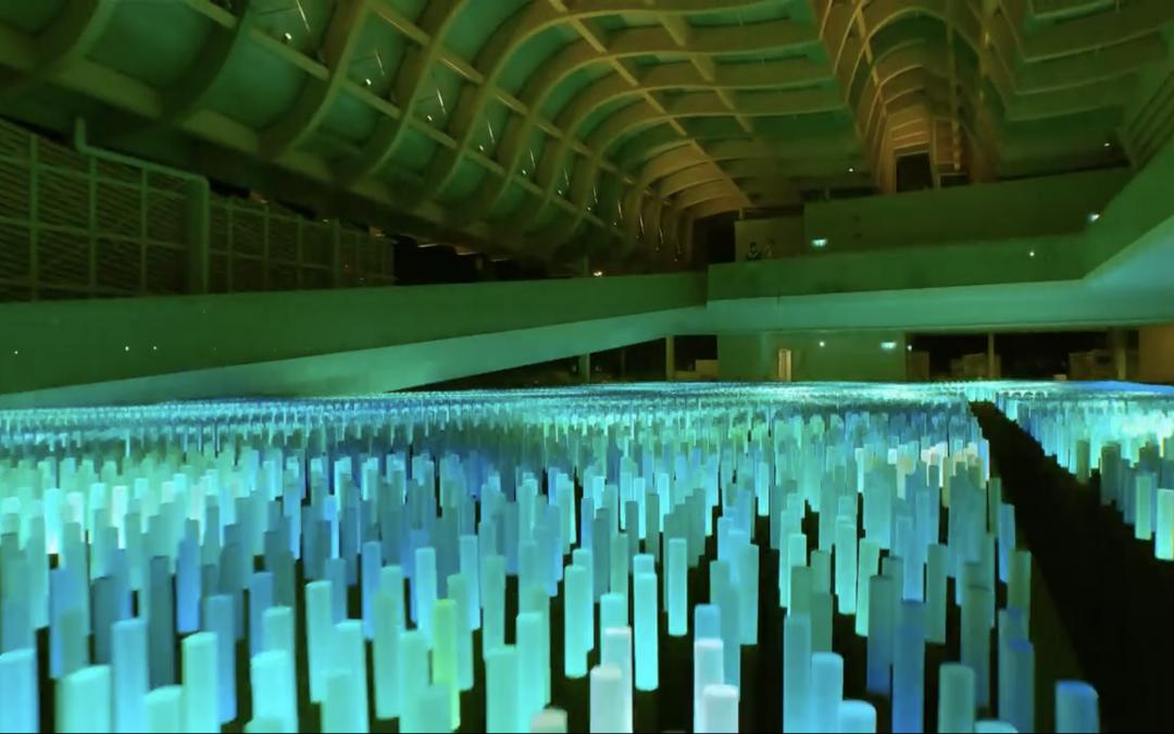 The Field of Hope by Tsinghua University
